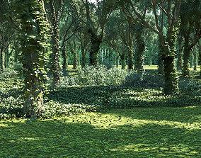 Forest Landscape 12 3D