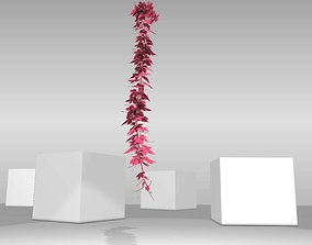 Wild Wine Vine - Parthenocissus - 3D model 3