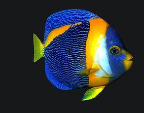 3D model Angel fish queen