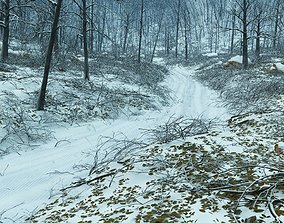 Forest winter in Vue 3D model