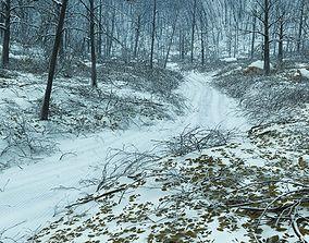 3D model Forest winter in Vue