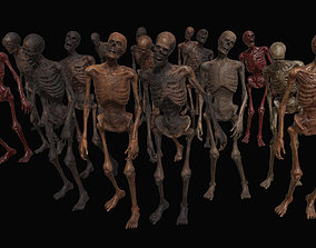 Skeleton Zombies 3D model rigged