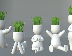 3D model Plants in decorative pots