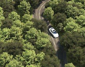 Road Scene 3D model
