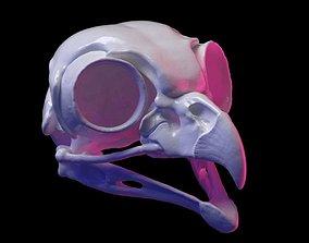 3D print model Owl skull