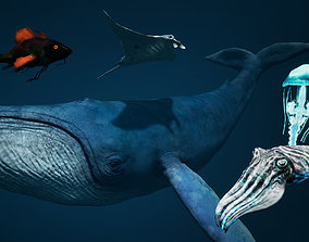 Sea Creature Pack 3D model