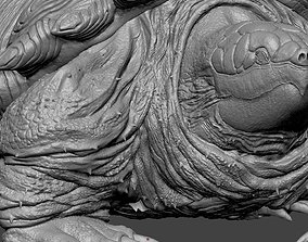 3D print model Fantasy Turtle Creature