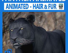 3D model Animated Panther