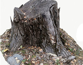 3d scan BPR tree stump 04 low-poly