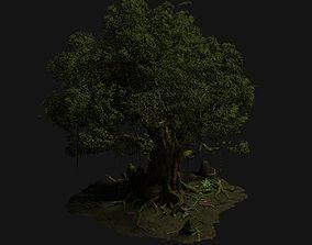 3D Old trees