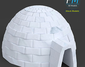 3D model PBR Igloo shelter