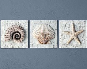 3D model Nautilus Seashell and Starfish Plaques
