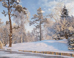 Winter Trees Collection 3D model