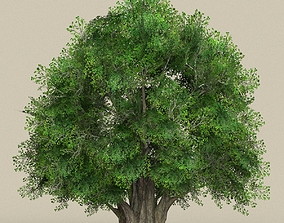 3D model Game Ready Tree 02