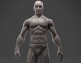 3D print model Male Anatomy Sculpture