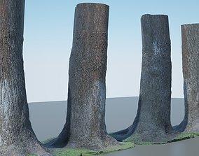 3D model Tree Trunk - 04