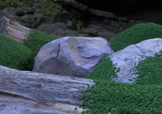 3d Scanned Rocks Project