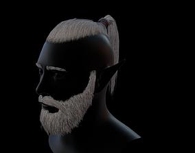 3D model Hair tail beard