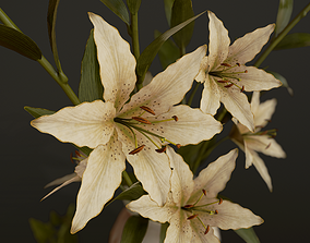 Bouquet with Lilies - PBR Game Ready vase 3D asset