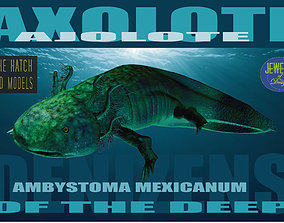 rigged Axolotl 3D model