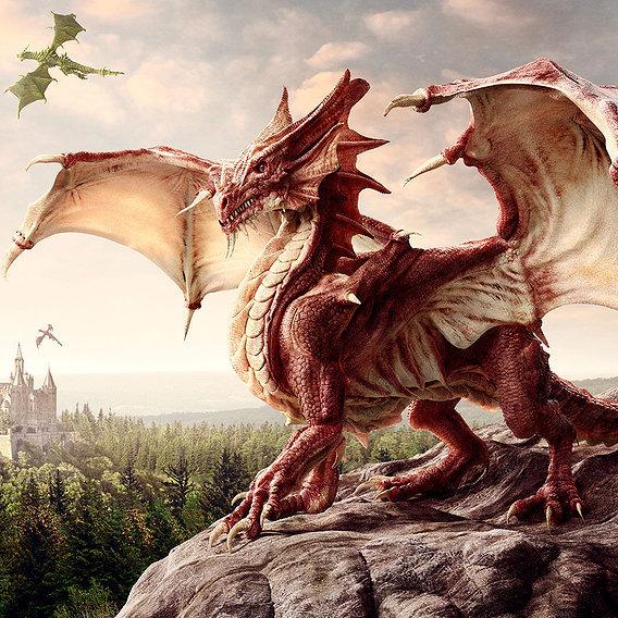 Dragons exhibition