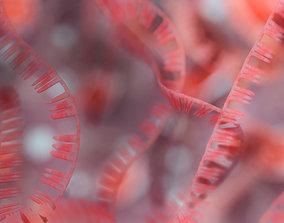3D model RNA collection - 4K - Ribonucleic acid
