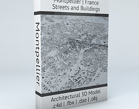 3D model Montpellier Streets and Buildings