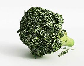 3D Fresh Green Broccoli