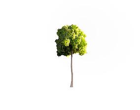 3D model VR / AR ready Low Poly Tree Stylish
