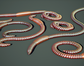 3D asset VR / AR ready Earthworms Rigged PBR