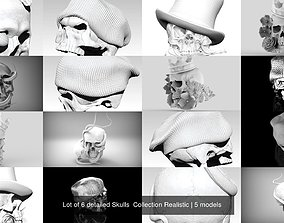 Lot of 6 detailed Skulls Collection Realistic 3D model