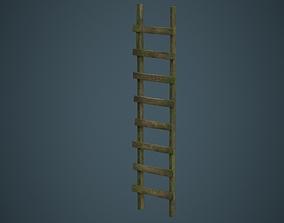 3D model Ladder 2B
