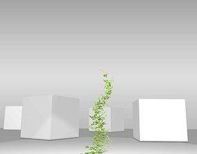 Ivy Vine - Version 8 3D asset