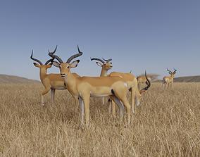 3D model realtime Gazelle