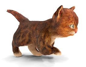 Fur Cute Red Cat Kitten Animated 3D asset