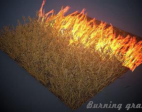 3D model Burning grass