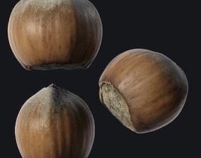 Hazelnut A 3D asset