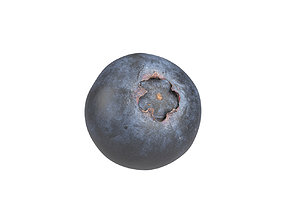Photorealistic Blueberry 3D Scan 3