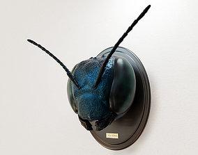 3D print model Insect head - mason bee