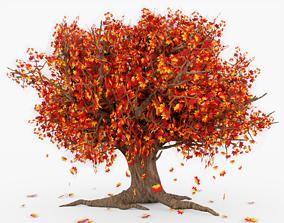3D asset VR / AR ready Tree Falling Leafs