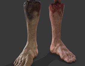 3D asset Severed Leg Fresh and Slightly Decomposed
