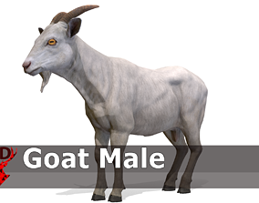 Goat male 3D model
