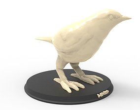 Warbler bird printable real