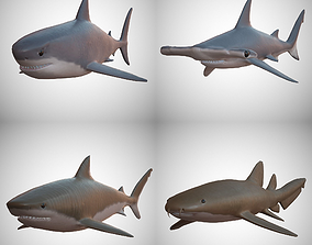 3D asset game-ready Sharks - 4 Pack