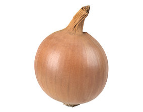 Photorealistic Onion 3D Scan 3D model
