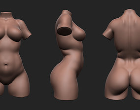 Plus Size Female Torso 3D asset VR / AR ready