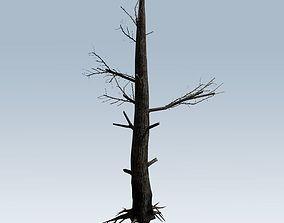 Tree charred trunk 3D model