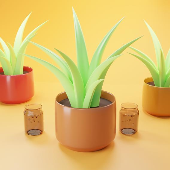 Low-Poly Plant Decoration