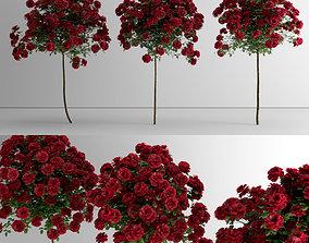 Roses - Lollipop 3D model