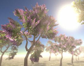 Lilac Trees 3D asset
